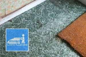Uxbridge Carpet Cleaning